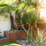 plantes exotiques palmier jardinière azobé galets gris