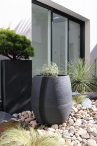 plantes en pot dans un patio