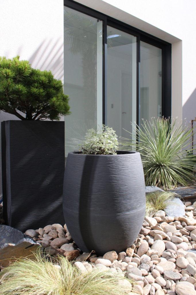 plantes en pot dans un patio