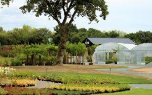pepinière marmin olonne végétaux arbres fleurs arbustes
